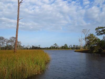 Ochlockonee River State Park (7)