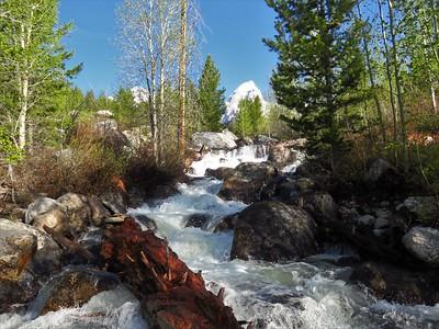 Taggart Lake Trail,  GTNP, WY (6)