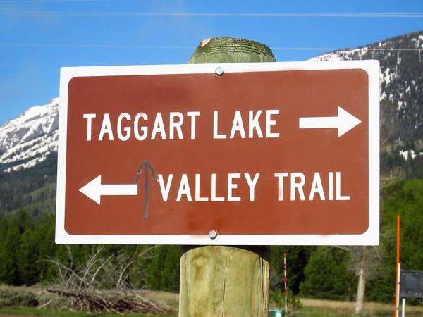 Taggart Lake Trail,  GTNP, WY (3)
