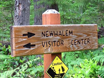 Trail of the Cedars, Newhalem Creek, WA (2)