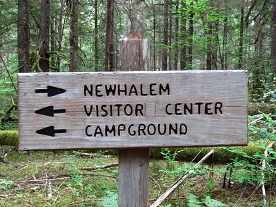 Trail of the Cedars, Newhalem Creek, WA (16)