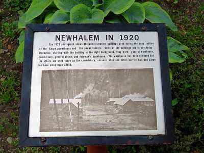 Trail of the Cedars, Newhalem Creek, WA (3)