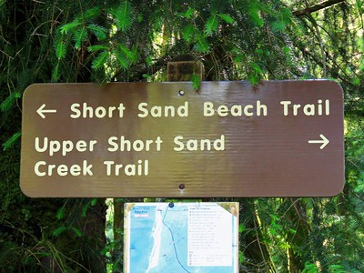 Short Sand Beach Trail, OR (3)