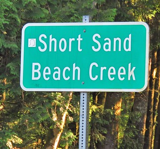 Short Sand Beach Trail, OR (1)
