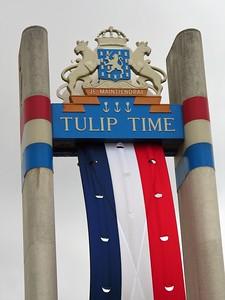 Tulip Time, Pella, IA (2)
