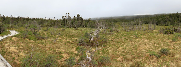 Cape Breton Highlands, Nova Scotia (2)