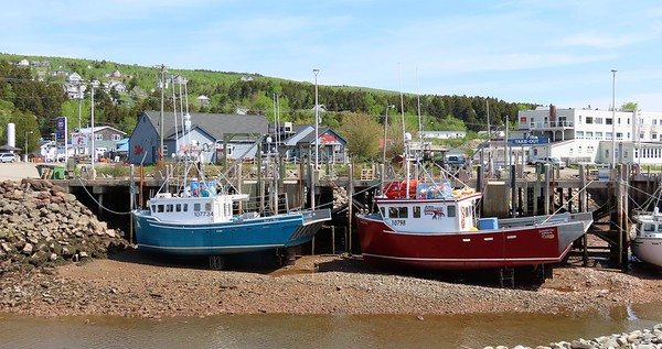 Fundy NP, Alma, NB (1)
