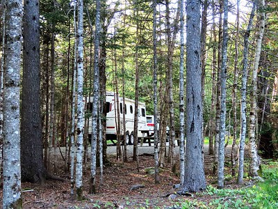 Fundy NP, New Brunswick (Chignecto Cpgr ) (5)