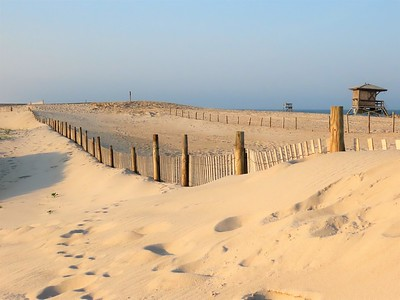 Assateague I N S , MD (12)