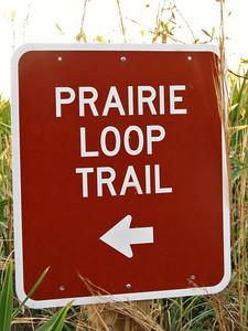 Kissimmee Prairie Preserve SP, FL (12)