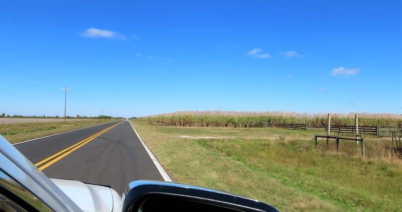 OTR to Kissimmee Prairie Preserve SP, FL (3)