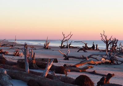Hunting Island State Park, SC (17) Beach Trail