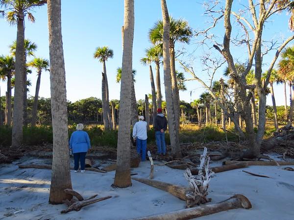Hunting Island State Park, SC (10) Beach Trail