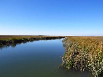 Hunting Island State Park, SC (7) Marsh Walk