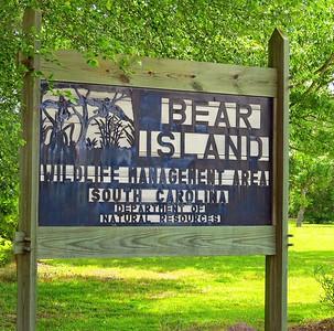 Bear Island WMA, SC