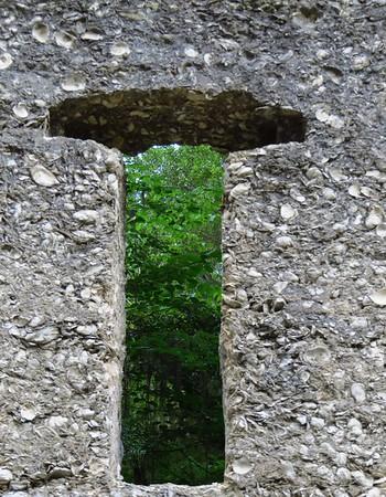 McIntosh Tabby Ruins, St  Marys, Georgia (9)