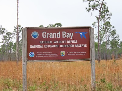 Grand Bay NWR, MS (1)