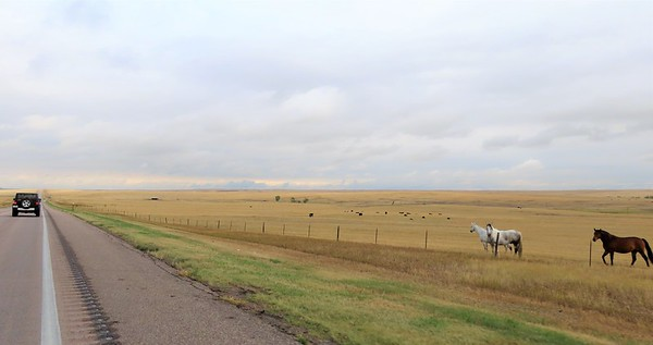 OTR to Custer SP, SD (4)