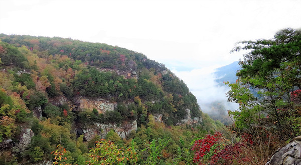 Cloudland Canyon SP, NC (4)