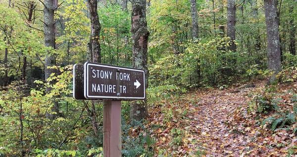 Stony Fork Cpgr , VA (5)
