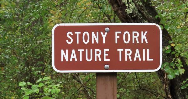 Stony Fork Cpgr , VA (4)
