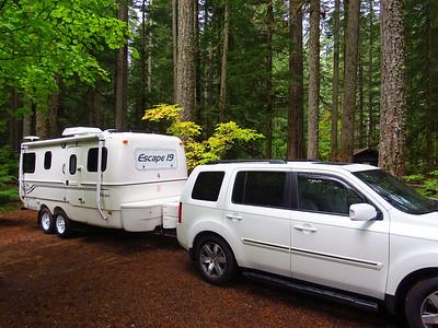 Ohanapecosh Cpgr  (Mt  Rainier NP, WA) (6)