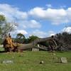 Leslie Cemetery, Searcy Co , AR (7)