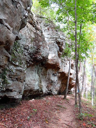 Seven Hollows Trail, Petit Jean SP, AR (17)