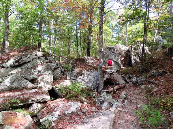 Seven Hollows Trail, Petit Jean SP, AR (39)