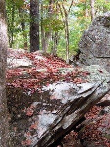 Seven Hollows Trail, Petit Jean SP, AR (41)