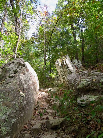 Seven Hollows Trail, Petit Jean SP, AR (38)