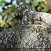 Leslie Cemetery, Searcy Co , AR (16)