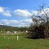 Leslie Cemetery, Searcy Co , AR (6)