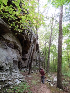 Seven Hollows Trail, Petit Jean SP, AR (20)