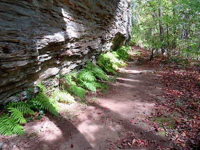 Seven Hollows Trail, Petit Jean SP, AR (31)