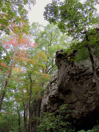 Seven Hollows Trail, Petit Jean SP, AR (13)