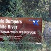 White River NWR, AR (1)