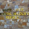 White River NWR, AR (2)