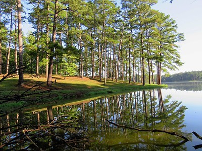 Choctaw Lake Rec  Area, Brookville, MS (12)