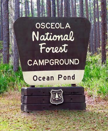 Ocean Pond Cpgr , FL (1)