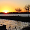 Sunset (Eastbank COE, Lake Seminole, FL) (4)