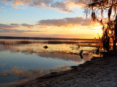 Sunset (Ocean Pond Cpgr ), FL (2)