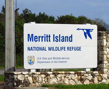 Merritt NWR, Titusville (1)
