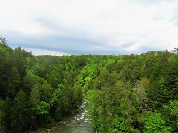 Fall Creek Falls SP, TN (9)