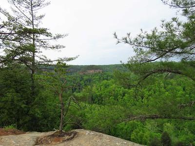 Koomer Ridge Cpgr , KY (15)