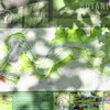 Cornell Botanic Gardens, Ithaca, NY (2)