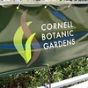 Cornell Botanic Gardens, Ithaca, NY (1)