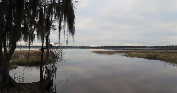 Ocean Pond Cpgr , Osceola NF, FL (5)