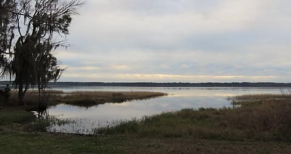 Ocean Pond Cpgr , Osceola NF, FL (6)