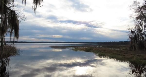 Ocean Pond Cpgr , Osceola NF, FL (1)